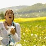 Аллергия в июле: симптомы и провокаторы