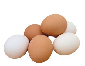 Аллергия на яйца у взрослых и детей