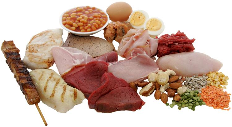 Животные продукты