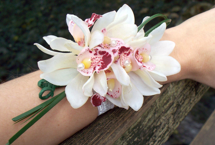 Орхидея на руках