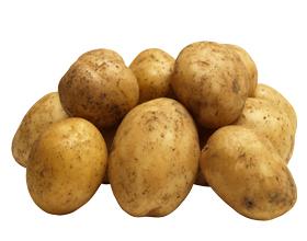 Аллергия на картофель у детей и взрослых