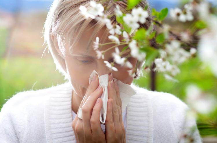 Чихание при аллергии