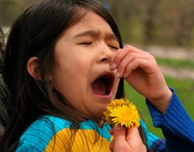 Аллергия на цветение у ребенка: причины, симптомы и лечение