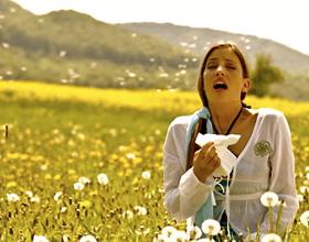 Аллергический поллиноз: что это, симптомы, диагностика и лечение