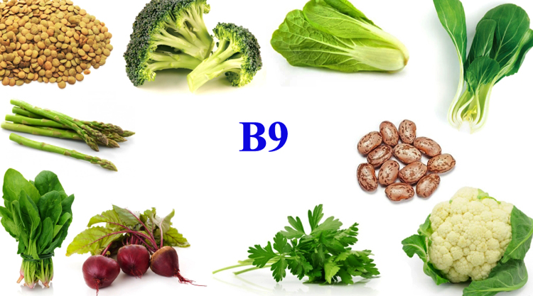 Витамин B9