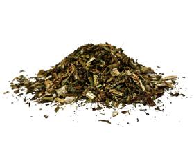 Какие травы помогают при аллергии — описание и полезные свойства