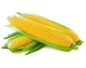 Аллергия на кукурузу у взрослых и детей