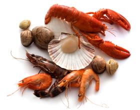 Аллергическая реакция на морепродукты