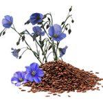 Аллергия на лен и его семена: причины, симптомы и что делать