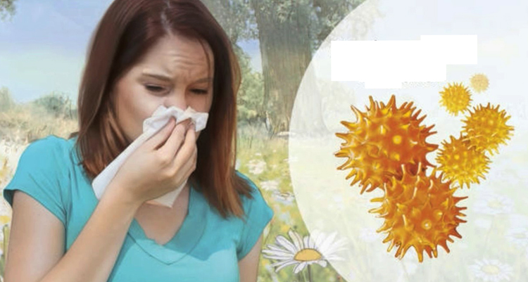 Проявление аллергии на ольху