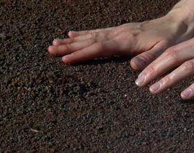 Аллергия на землю: может ли быть, симптомы и лечение